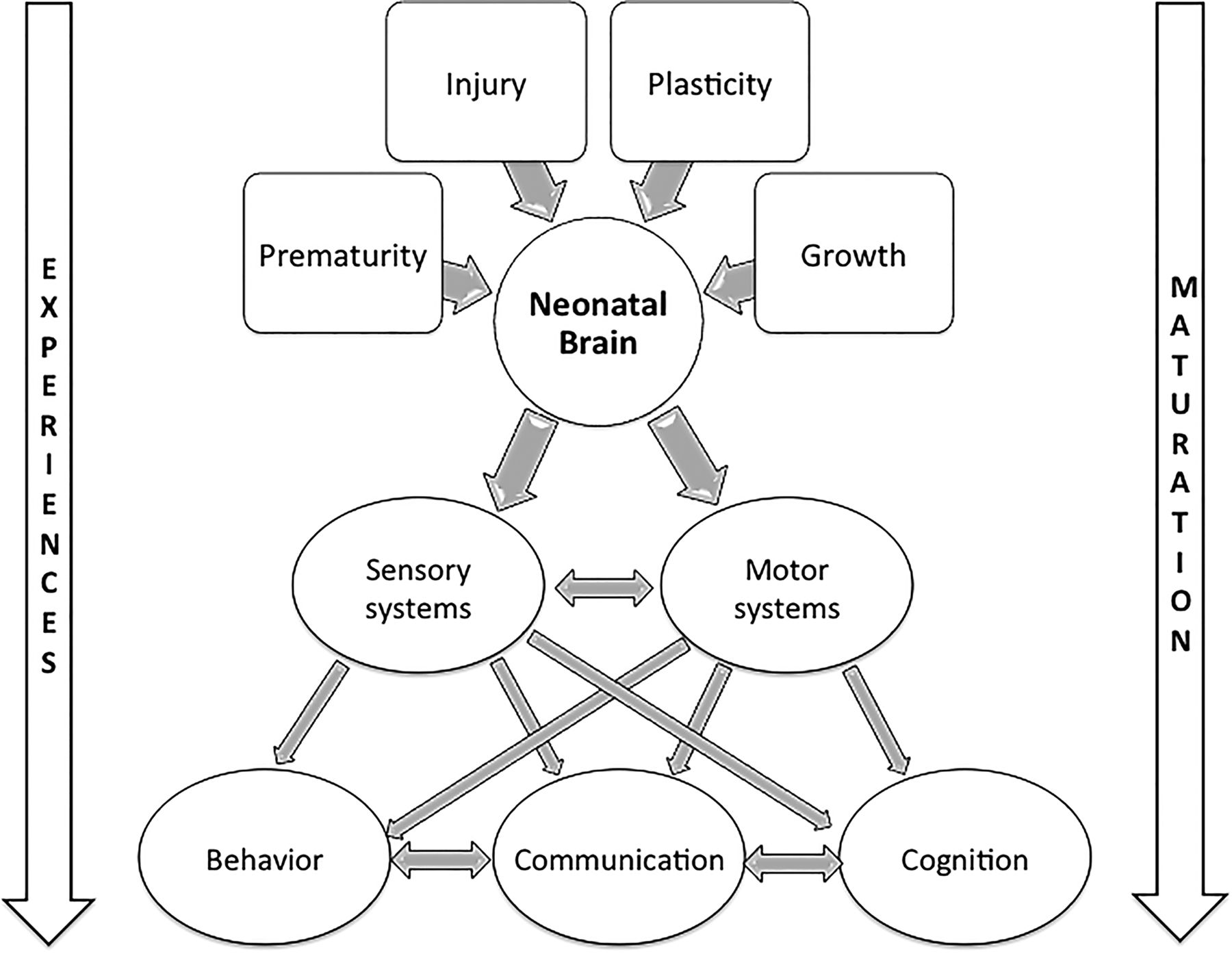 Neurorehabilitation after neonatal intensive care