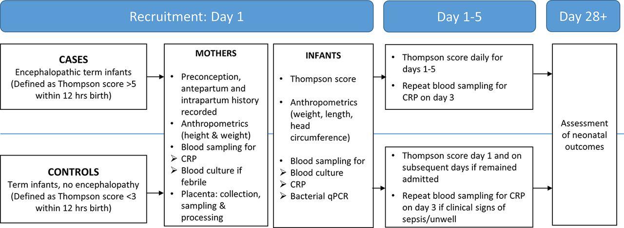 Perinatal risk factors for neonatal encephalopathy: an
