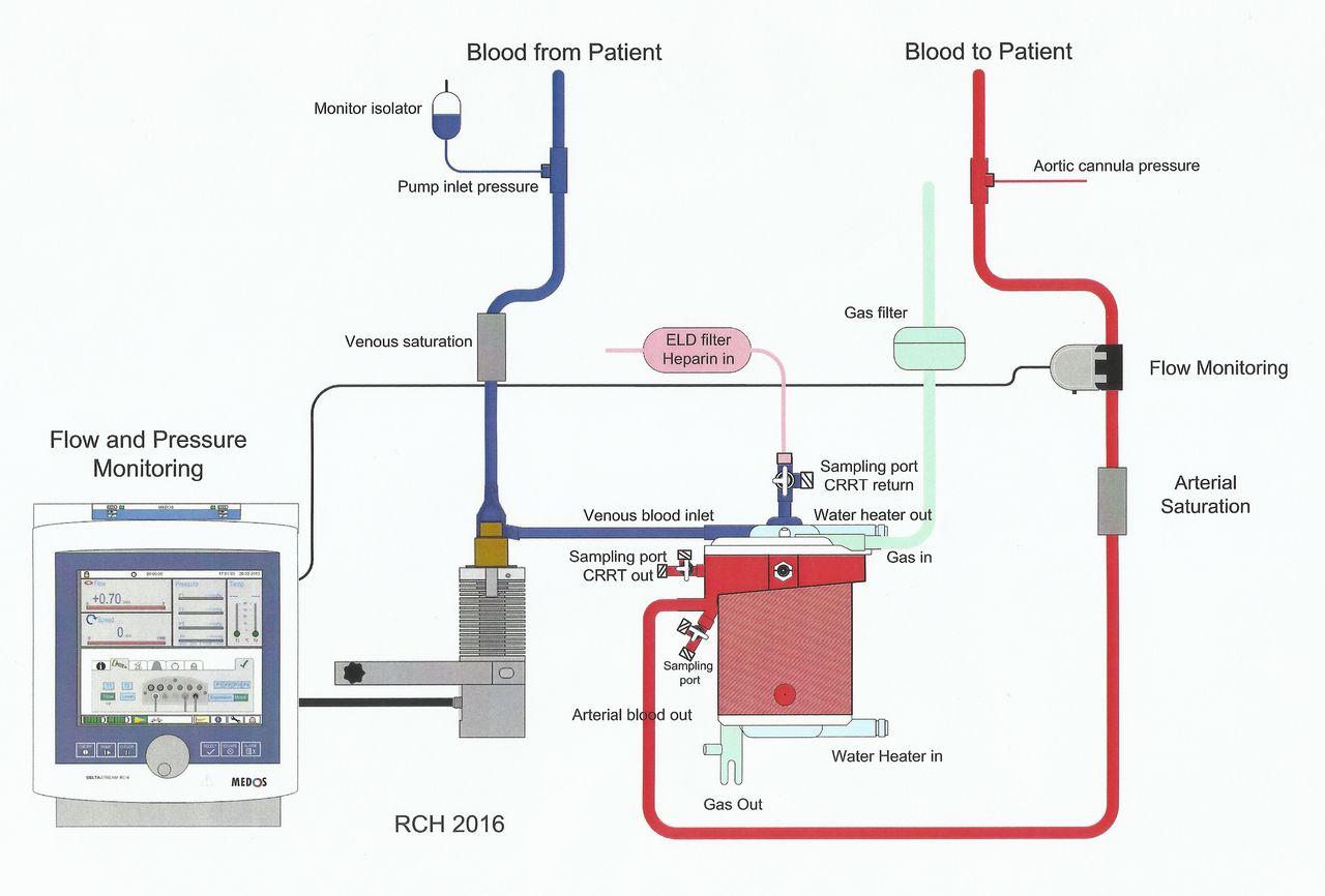 cardiac arrest pdf