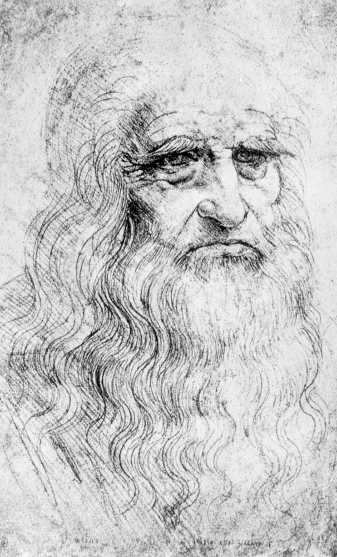 Leonardo Da Vinci 14521519 And Reproductive Anatomy Adc Fetal