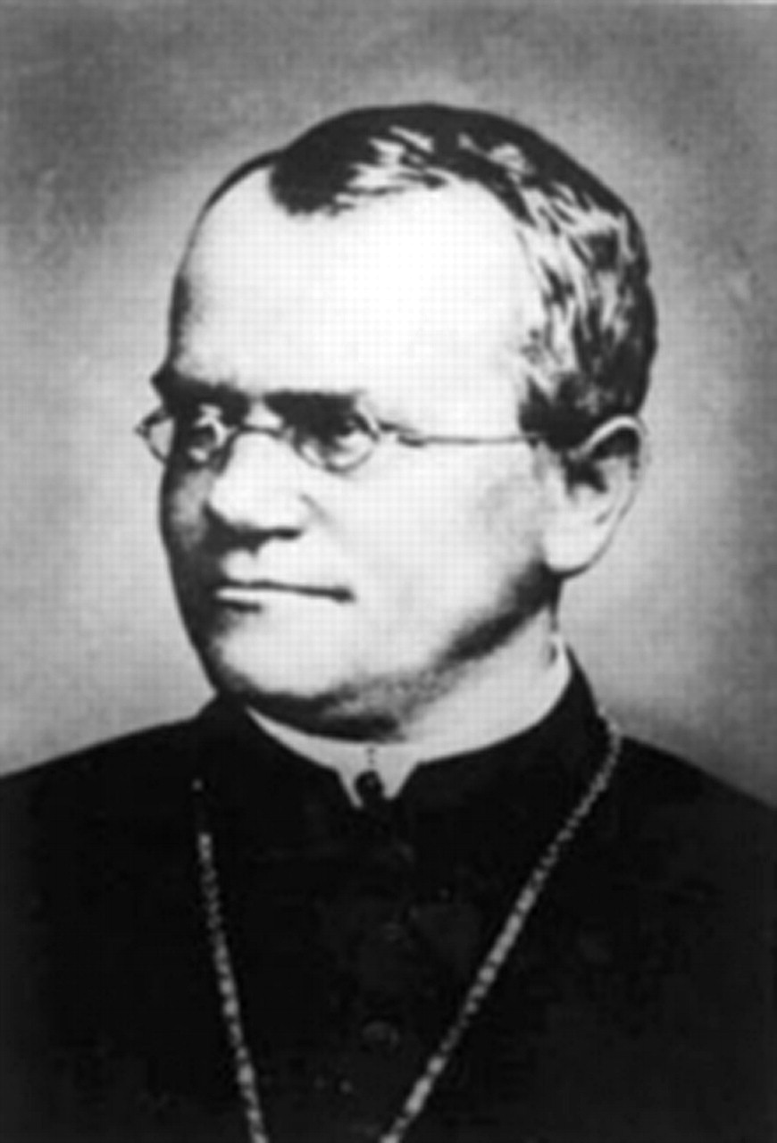 how to draw gregor mendel