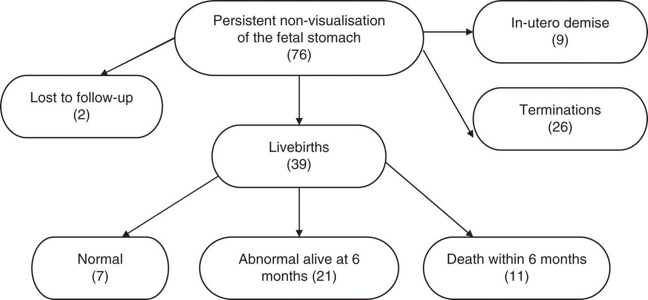 Persistent non-visualisation of the fetal stomach: diagnostic and ...