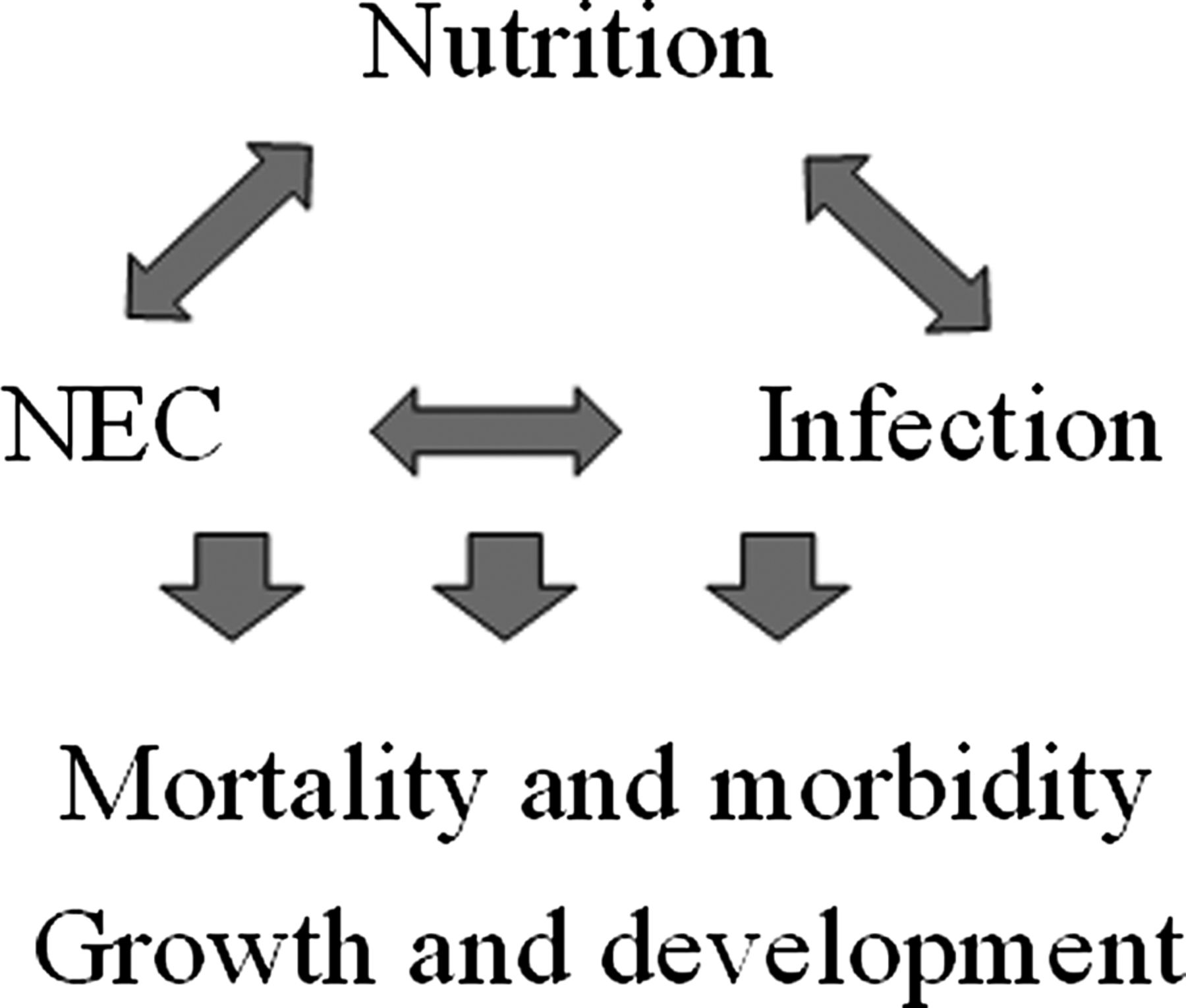 Early enteral feeding strategies for very preterm infants