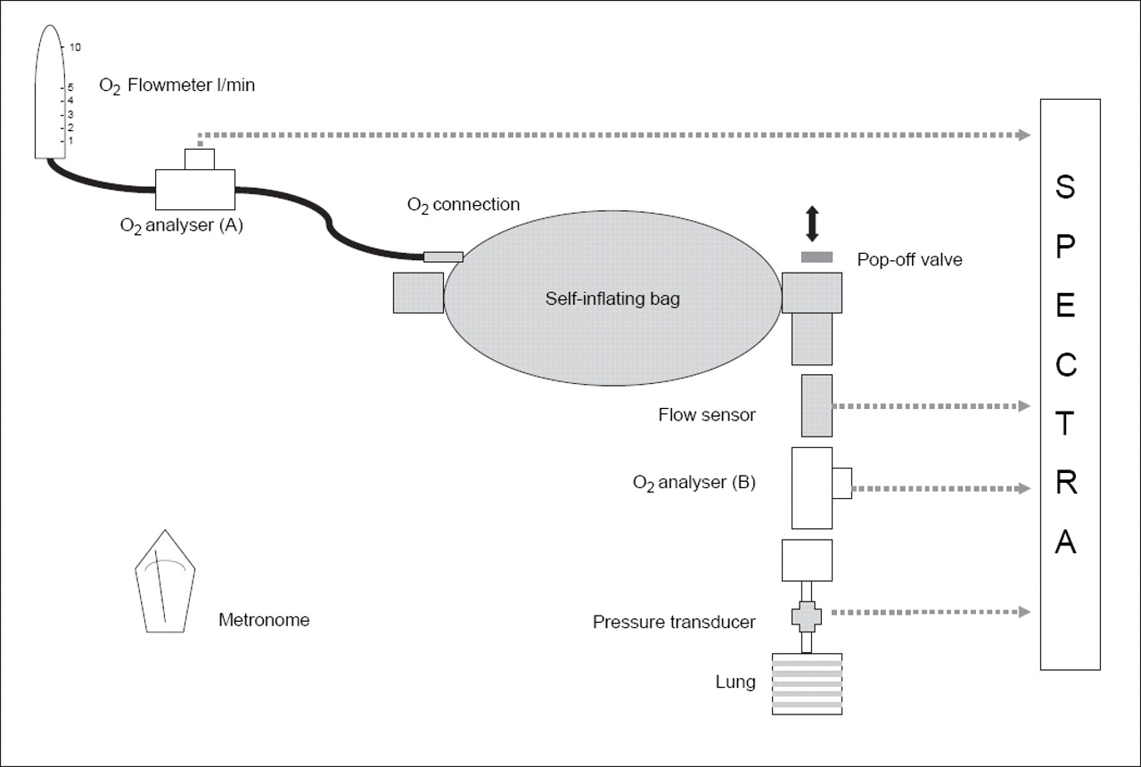 Oxygen Delivery Using Neonatal Self Inflating Resuscitation Bags Metronome Circuit Download Figure