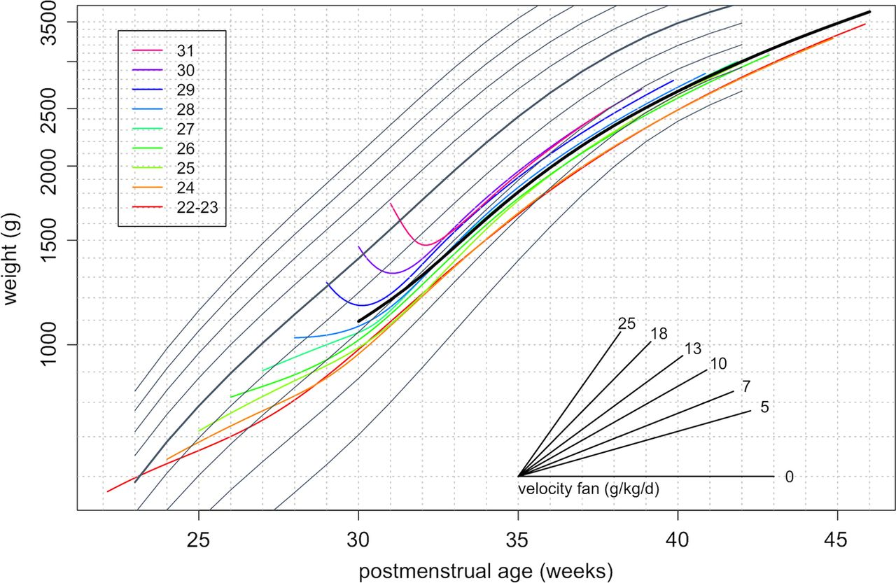 Birth Weight And Longitudinal Growth In Infants Born Below 32 Weeks